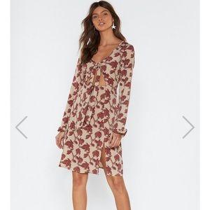 Nasty Gal Rose Skater Dress